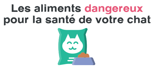aliment dangereux chat