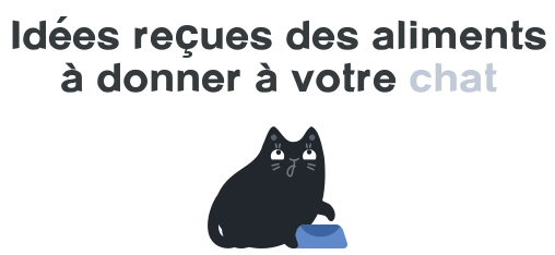 alimentation chat