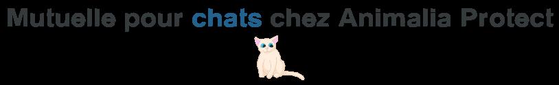animalia protect mutuelle chat