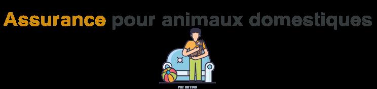assurance animal domestique