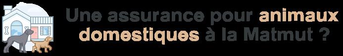 assurance animaux domestiques matmut
