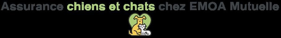 assurance chiens chats emoa mutuelle