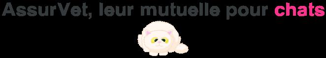 assurvet mutuelle chats