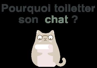avantages toilettage chat
