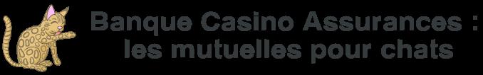 banque casino assurances mutuelle chats