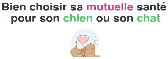 choix mutuelle chien chat