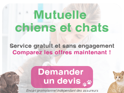 comparer mutuelle animal