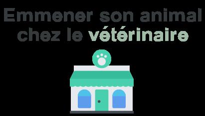 emmener animal veterinaire
