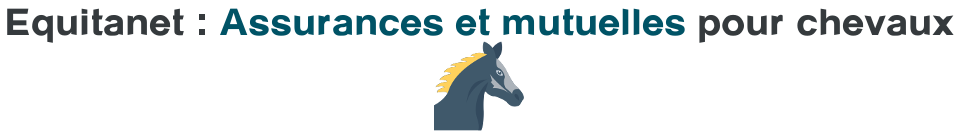 equitanet assurance mutuelle chevaux
