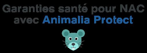 assurance nac animalia protect
