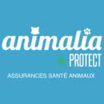 Logo Animalia Protect