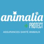 Logo Animalia Protect