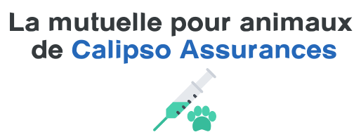 mutuelle animaux calipso assurances