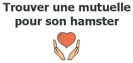 mutuelle hamster