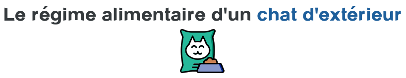 regime alimentaire chat exterieur