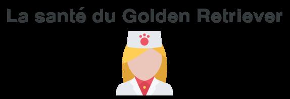sante golden retriever