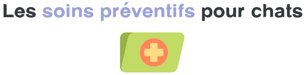 soins preventifs chat