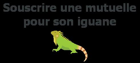 souscrire mutuelle iguane